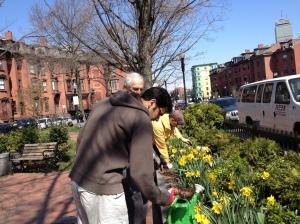 Arbor Day 2013 Planting