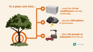 TreeBenefits_HDPoster